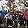 坂戸より 鶴ヶ島運動公園へお花見に行きました。